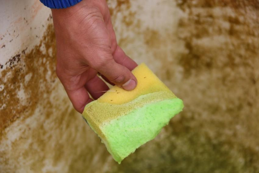 Купить химию для чистки стенок бассейна